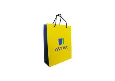 sac_aviva_01