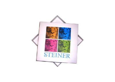 steiner_01
